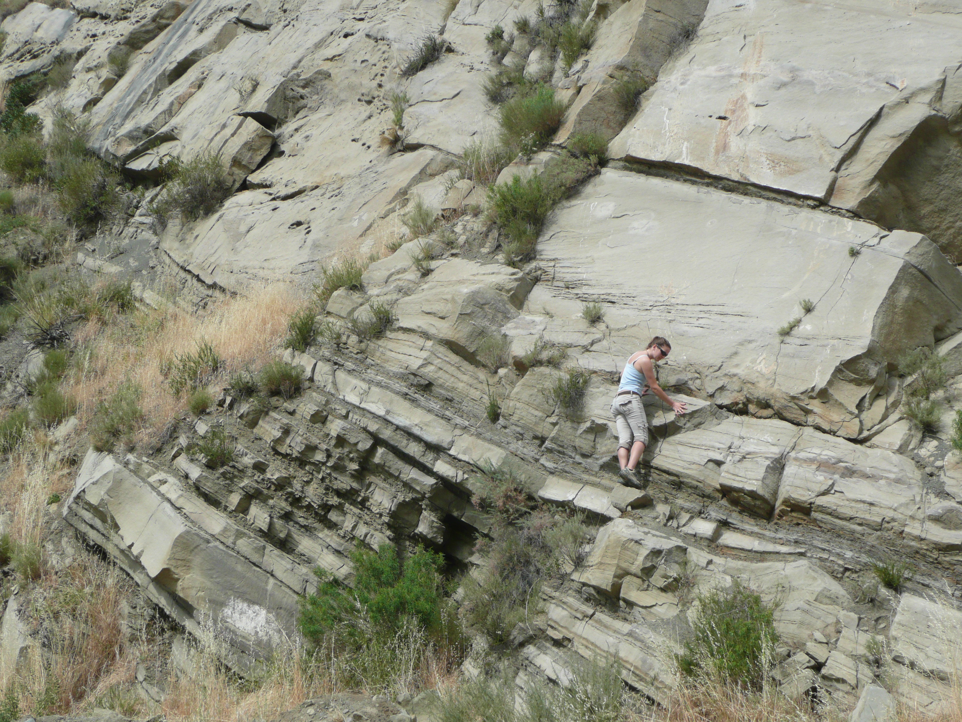 GEL 109L students measuring sections in the Ridge Basin, CA