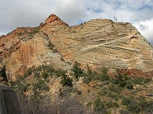 300px-Cross-bedding_Of_Sandstone_Near_Mt_Carmel_Road_Zion_Canyon_Utah.jpg